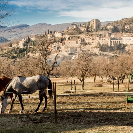 Les Calades du Ventoux © Francis Manguy-3737